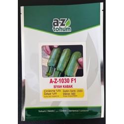 A-Z-1030 F1 Siyah Kabak Tohumu