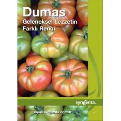 Dumas F1 Köy Domates Fidesi