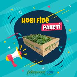 Hobi Fide Paketi 300 Adet