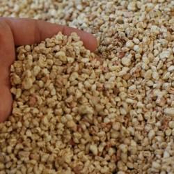 Mısır Sılajı (Mantar Kullanımı) 20 Kg