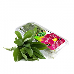 Taze Adaçayı 25 gram
