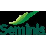 Seminis Tohum
