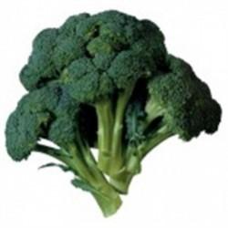Brokoli Fidesi