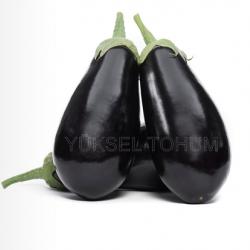 Karagül F1  Patlıcan Tohumu